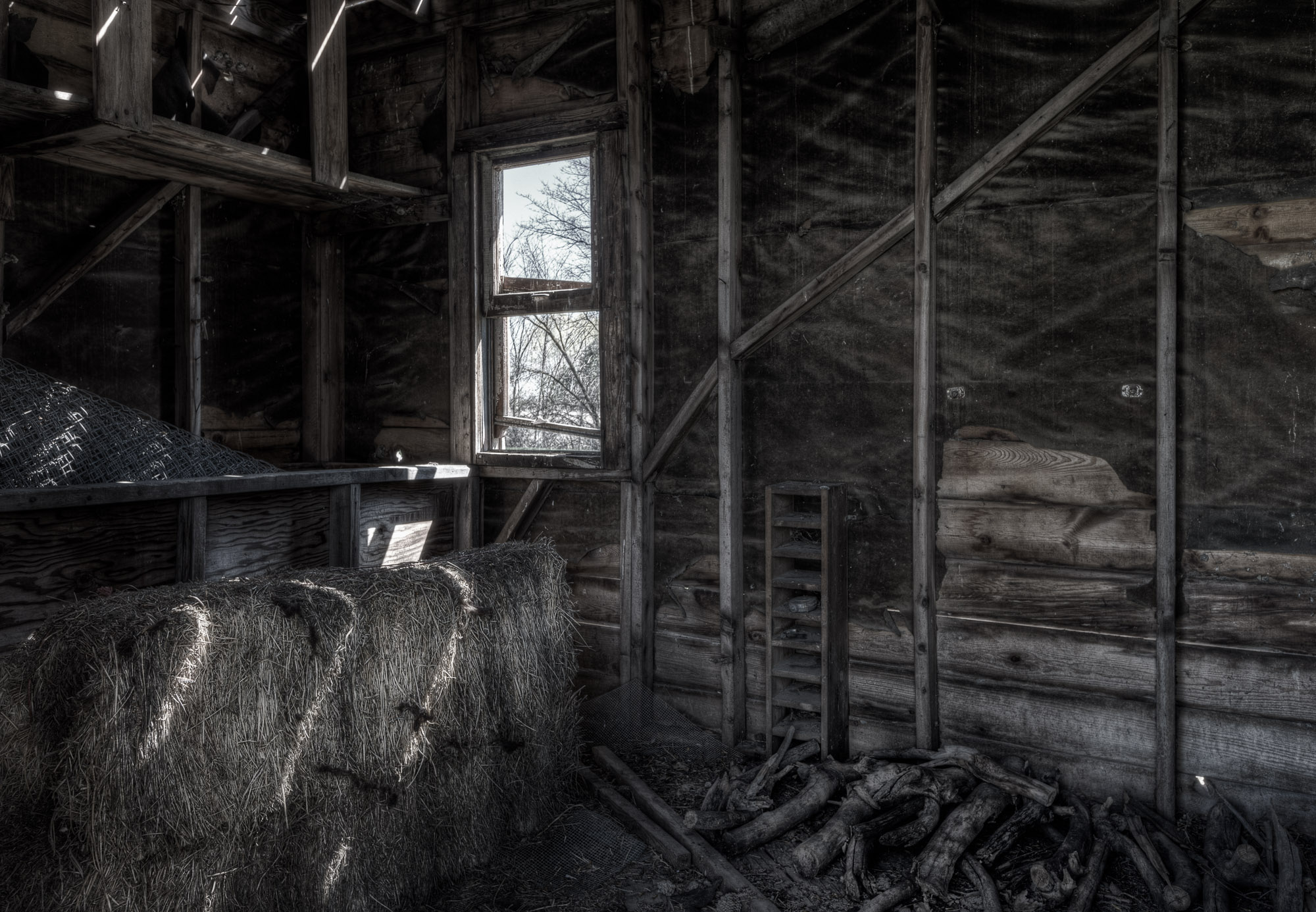 inside an old shed