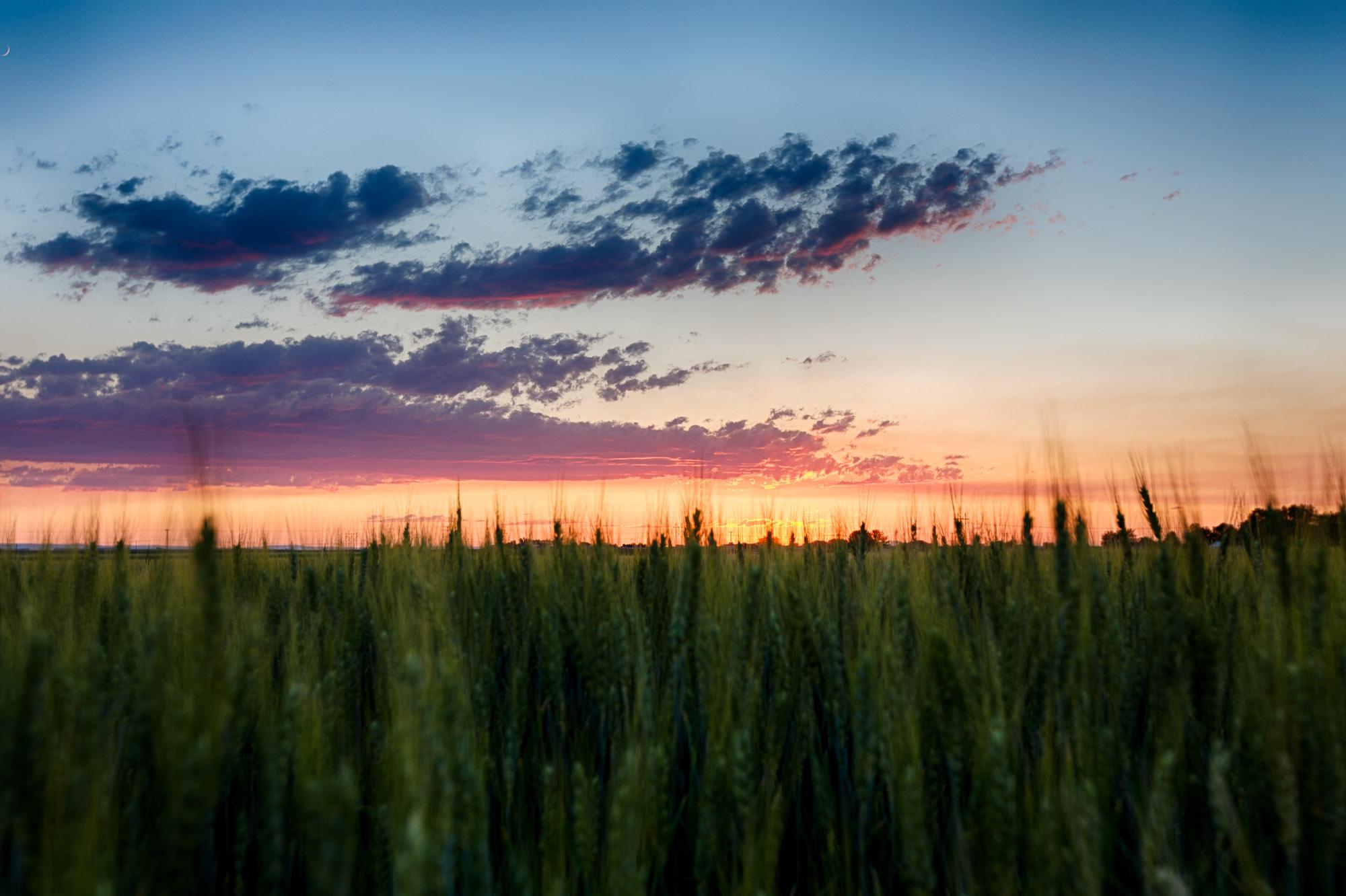 Caldwell Sunset