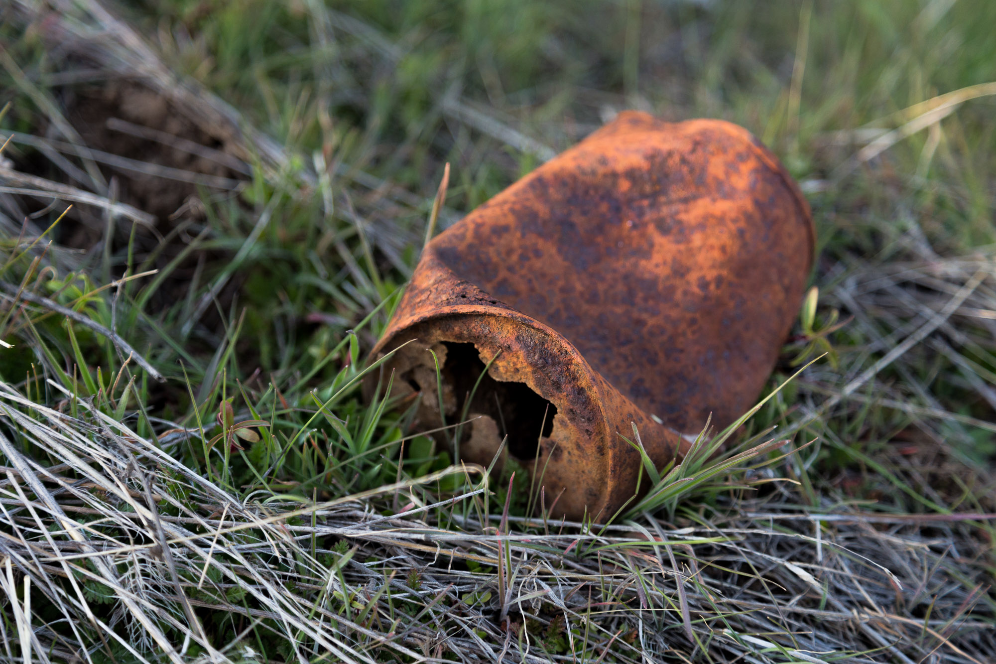 Old Rusty Can